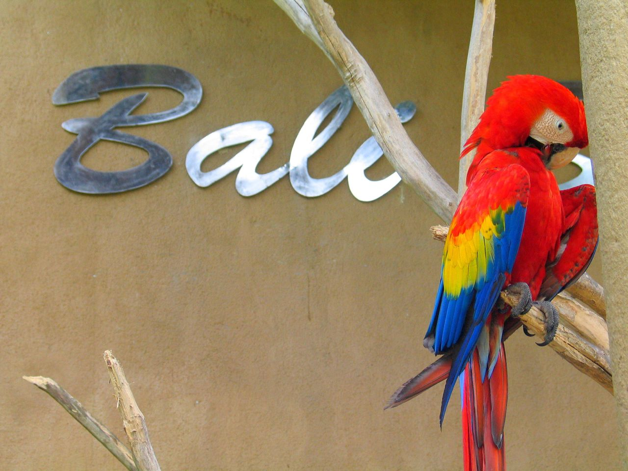 Bali Putnu parks