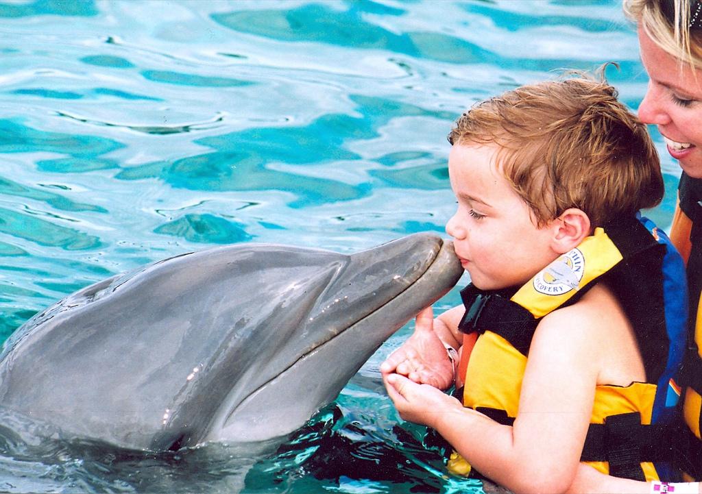 Delfīni un bērni