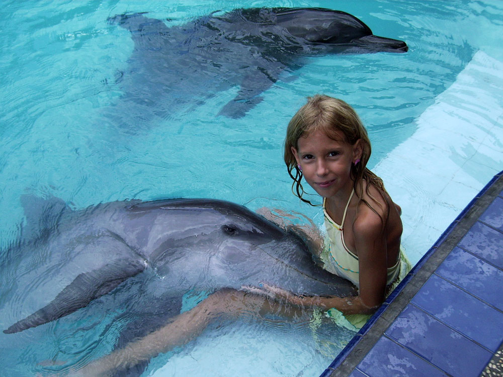 Delfīnu terapija