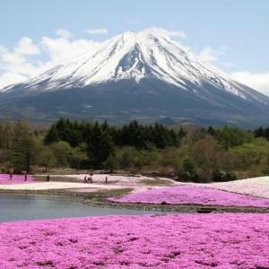 Fudzi kalns, Japāna