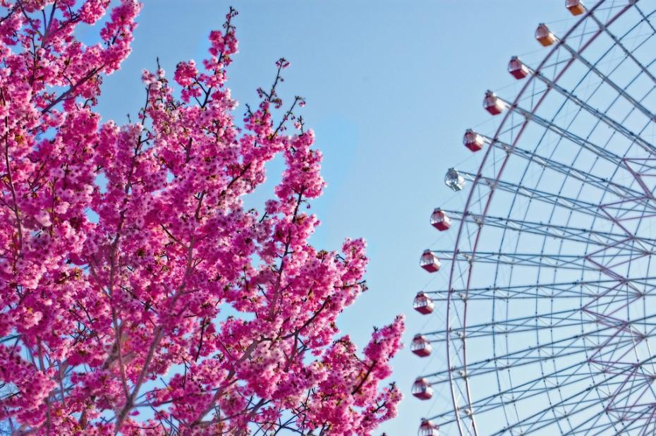 Osaka, panoramas ritenis