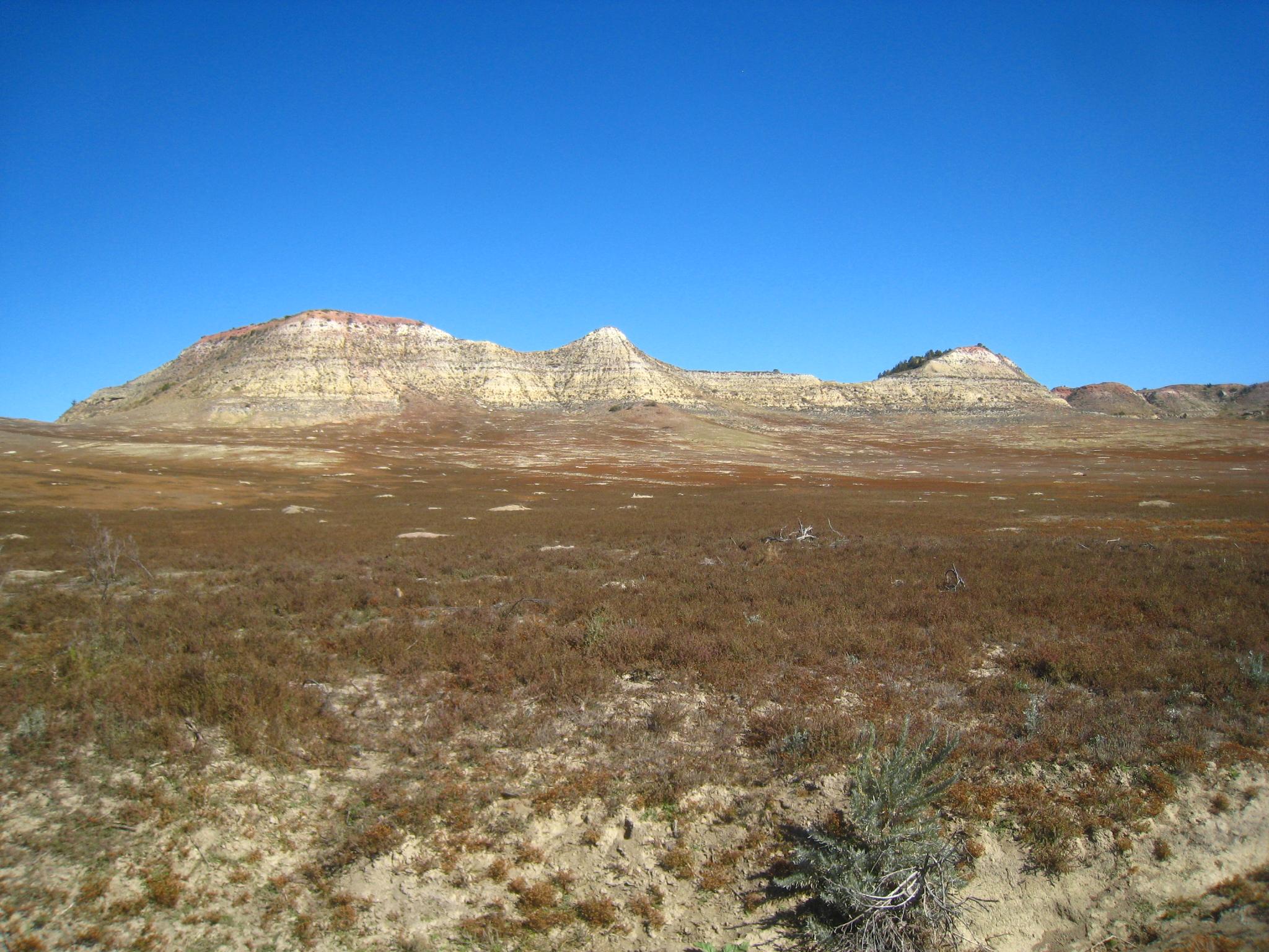Prērija Teodora Ruzvelta Nacionālajā Parkā Ziemeļdakotā