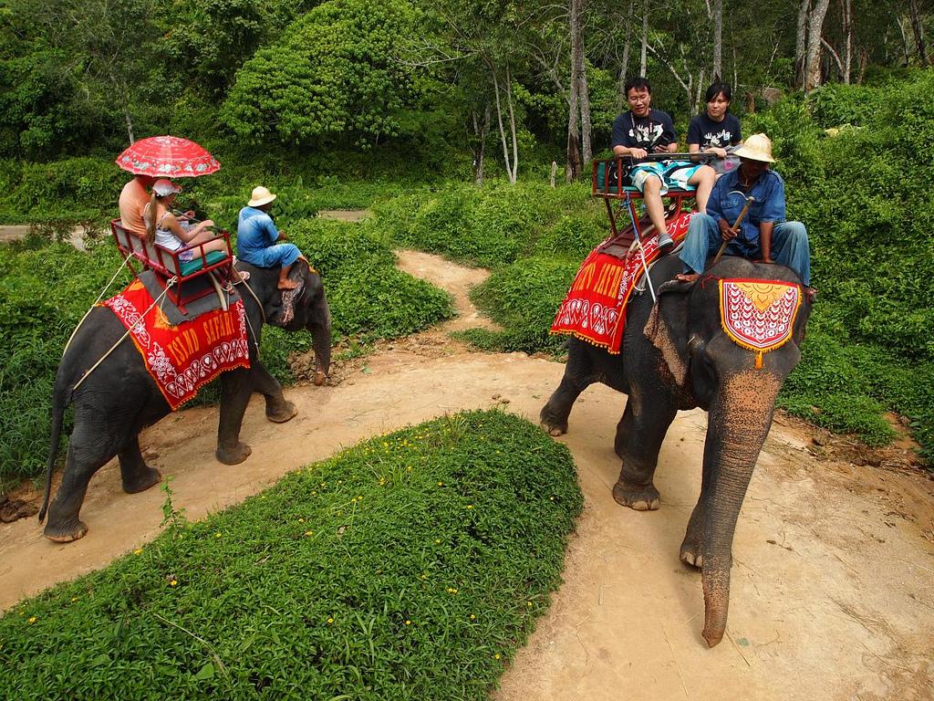 Ziloņu safari